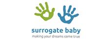 Surrogate Baby Consulting (SBC LLC)