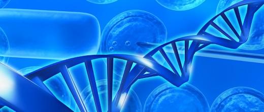 Inconvenientes de la adopción de embriones