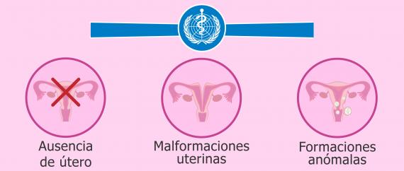 Salud reproductiva según la Organización Mundial de la Salud