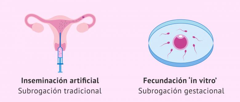 Las Técnicas De Reproducción Asistida Y Su Uso En