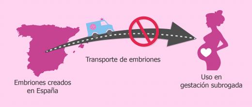 No está permitido transportar embriones creados en España a otro país para gestación subrogada