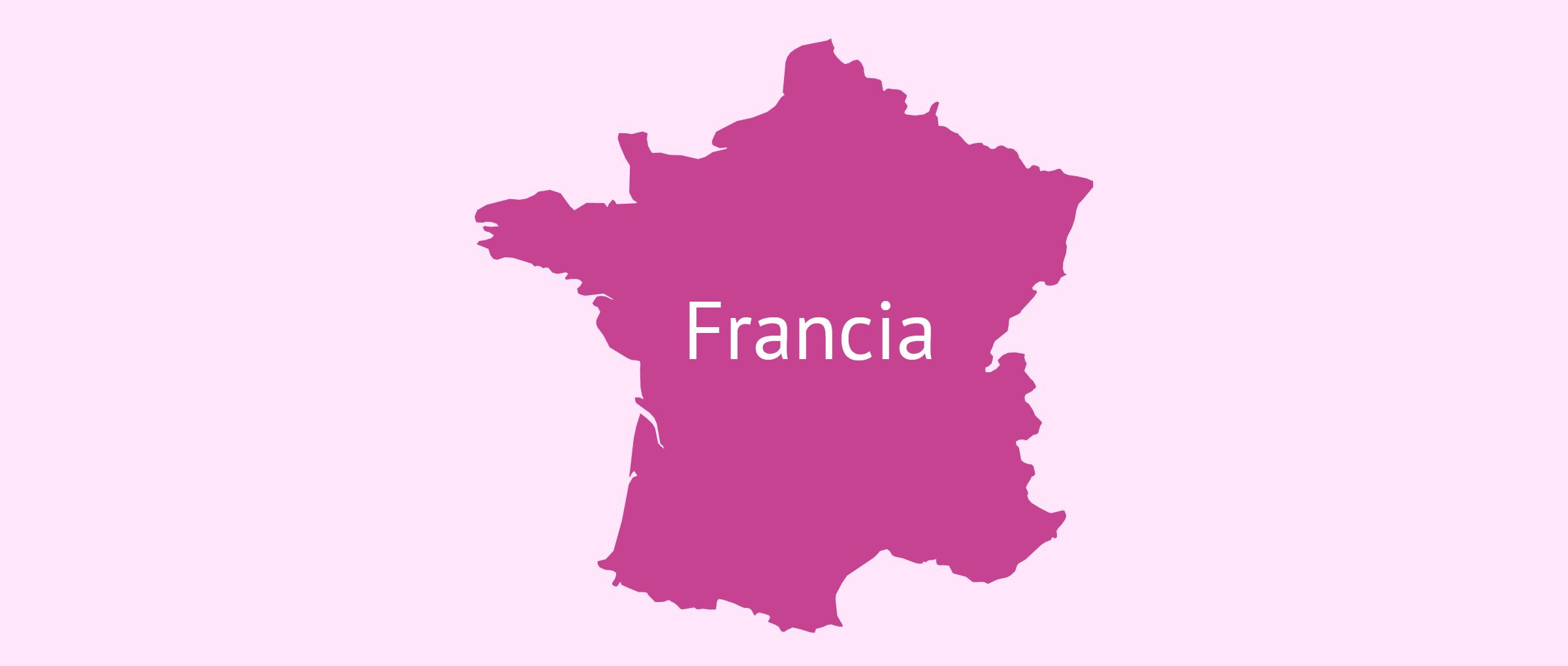 La gestación subrogada en Francia