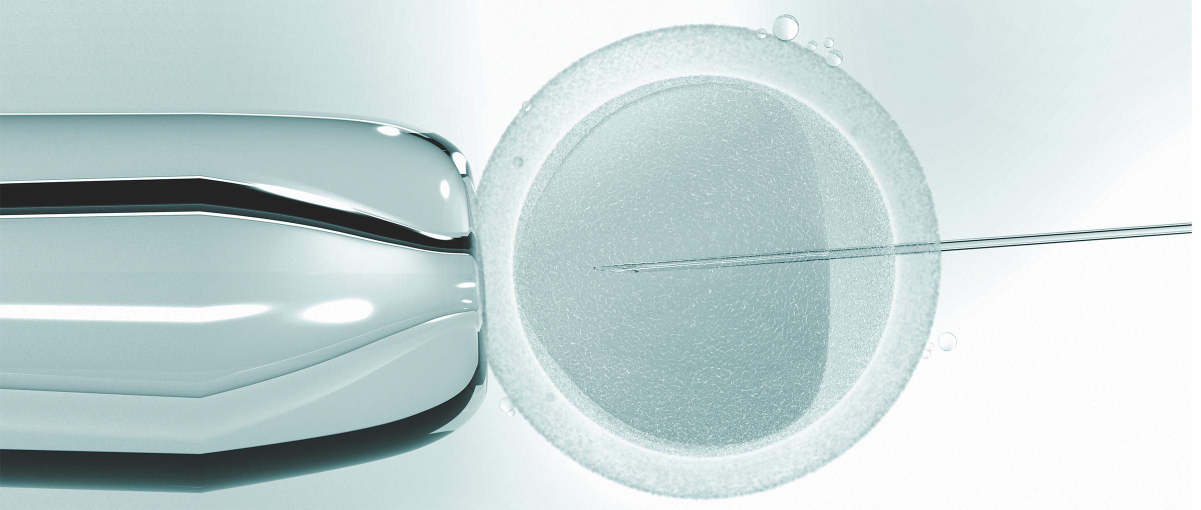 Las tasas de éxito de la fecundación in vitro (FIV)