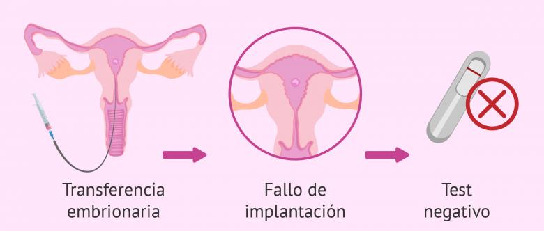 cuando se produce la implantacion tras transferencia de embriones