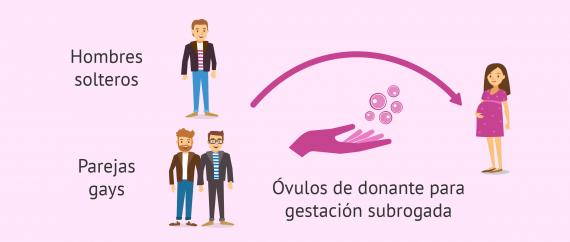 Si no hay pareja femenina se necesitan óvulos de donante