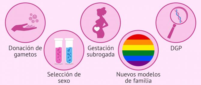 Turismo de reproducción asistida
