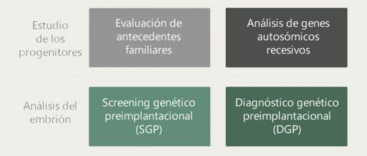 Estudio genético en ORM