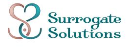 Surrogate Solutions