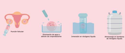 Proceso de vitrificación de óvulos