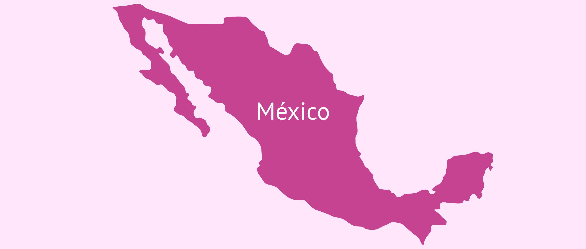 Gestación subrogada en México
