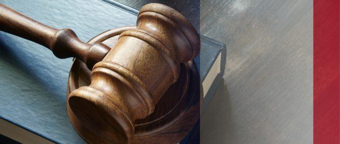 Los casos Mennesson y Labassee
