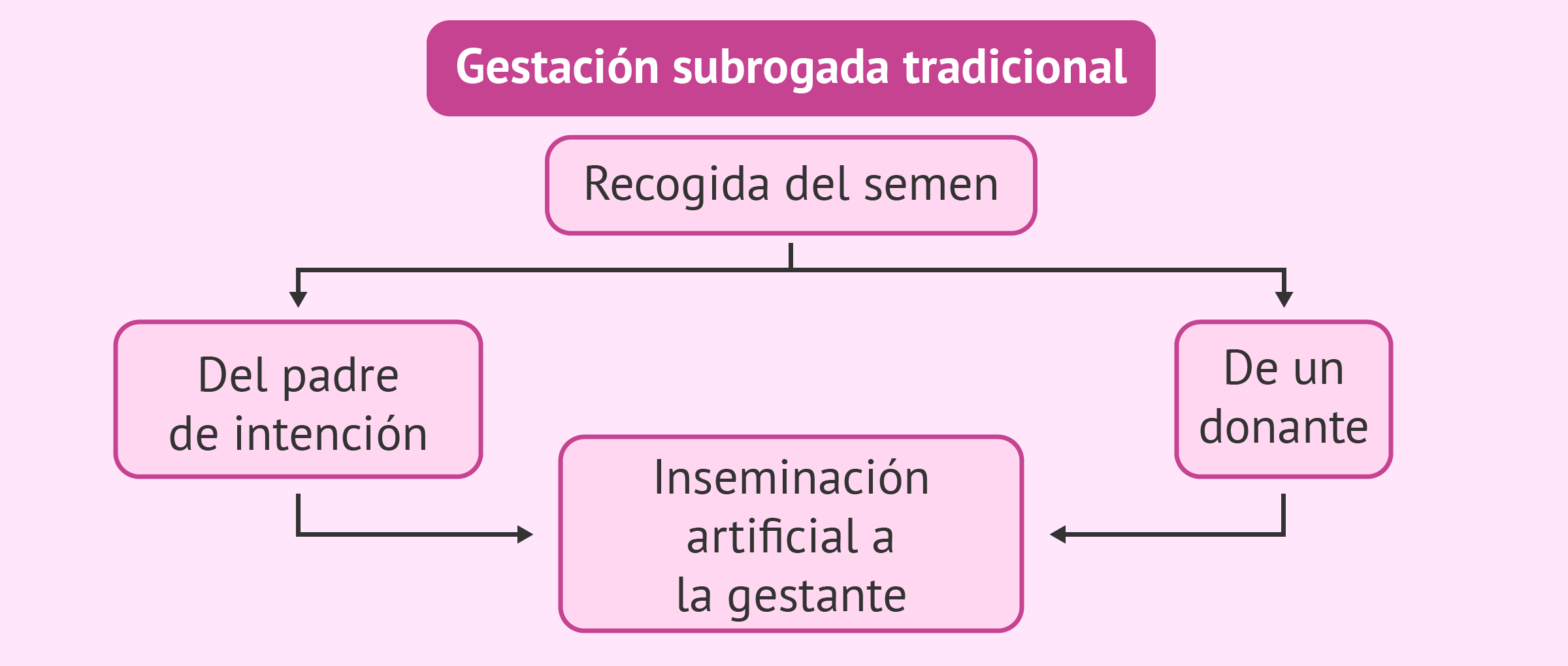 Combinaciones posibles en gestación subrogada tradicional