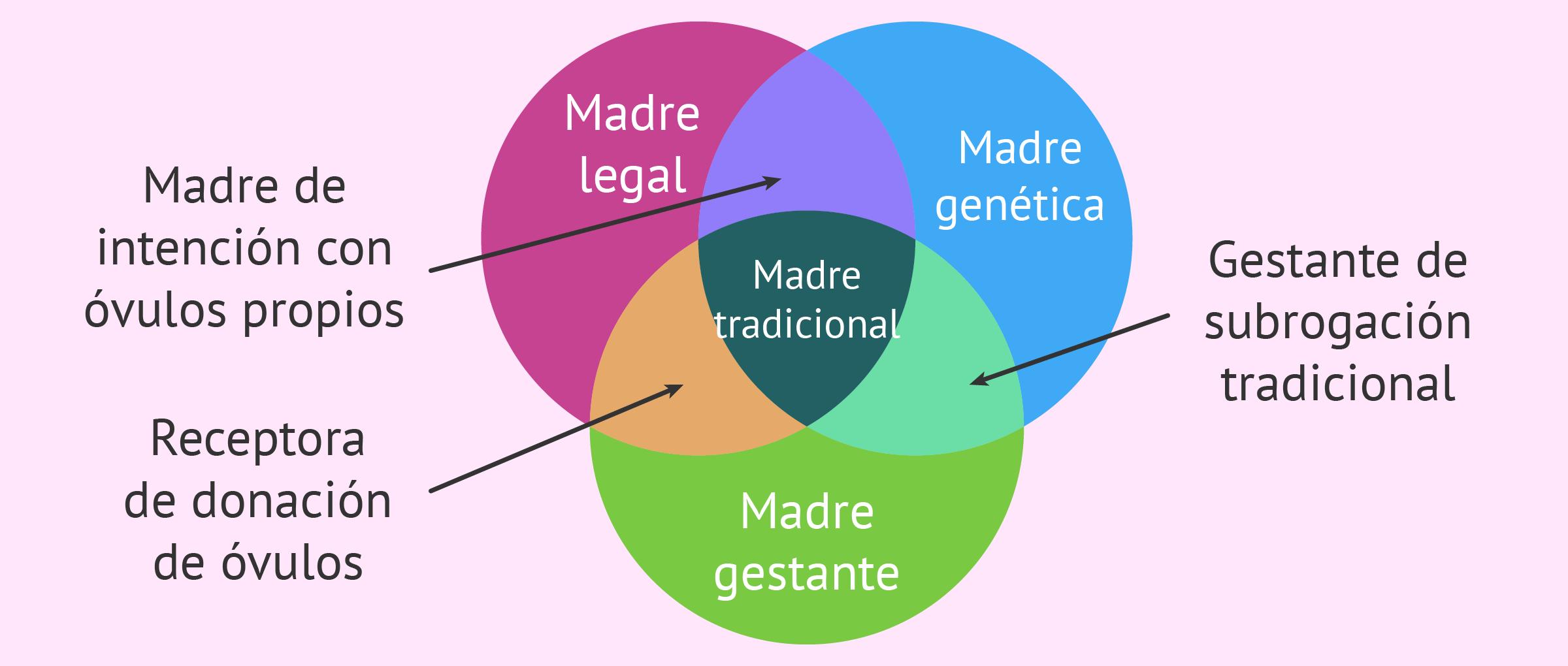 Fragmentación del concepto de maternidad