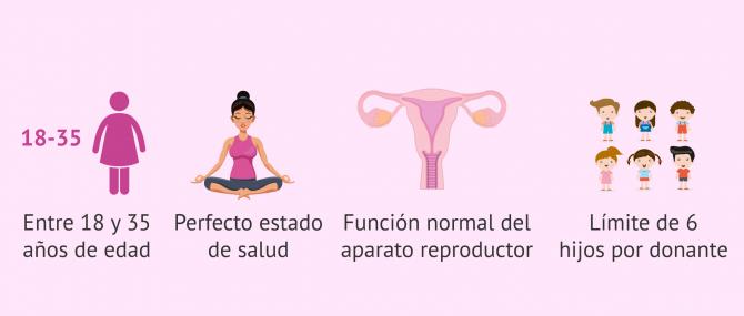 Donación de óvulos: requisitos, pruebas y procedimiento